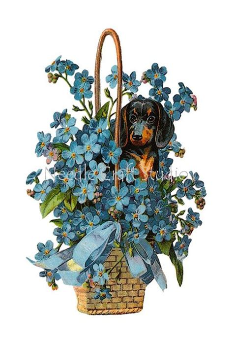 Vintage Dachshund in Basket of Flowers Cotton by