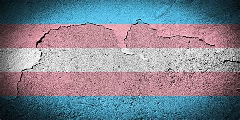 Royalty Free Transgender Flag Pictures, Images and Stock